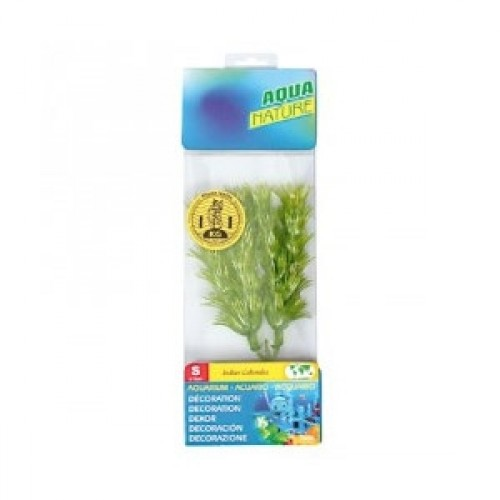 Planta Acvariu 20 cm imagine