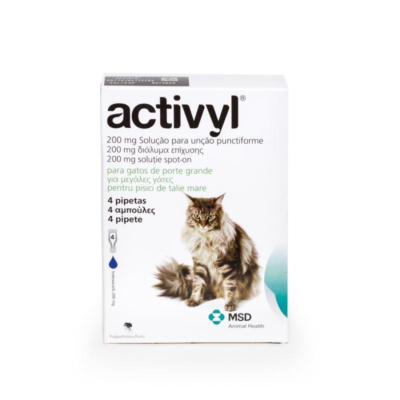 Activyl Cat (> 4kg), 4 pipete imagine