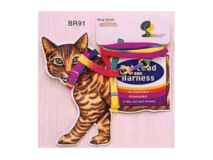 Ham + Lesa pisica BR 91 Card imagine