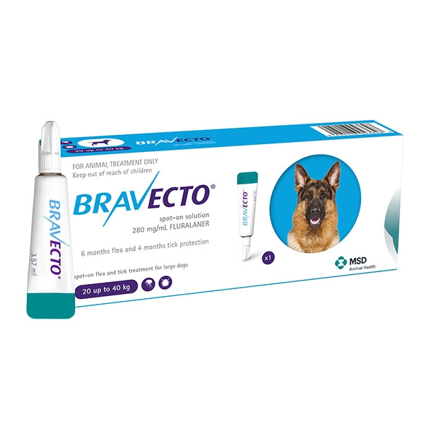 Bravecto spot on (20-40 kg) 1 pipeta imagine