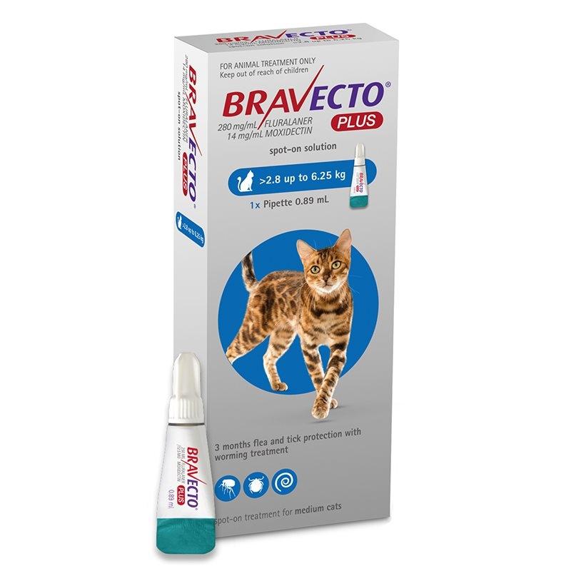 Bravecto Plus Spot On Cat 250 mg (2.8 - 6.25 kg), 1 pipeta imagine