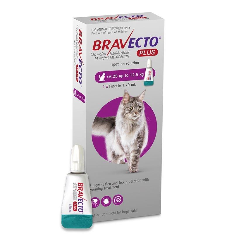 Bravecto Plus Spot On Cat 500 mg (6.25 - 12.5 kg), 1 pipeta imagine
