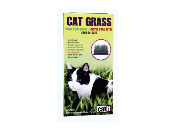 Hagen Iarba Pisica Cat Grass 85 g imagine