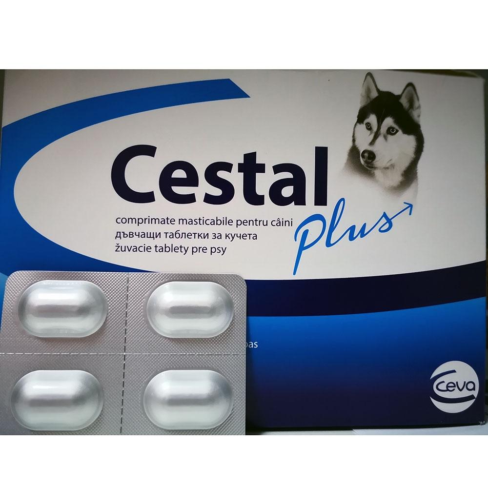 Cestal Plus Dog Flavour Blister 4 Tablete
