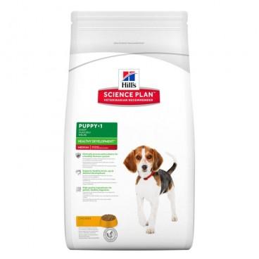 Hill's SP Puppy Healthy Development Medium hrana pentru caini cu pui 1 kg