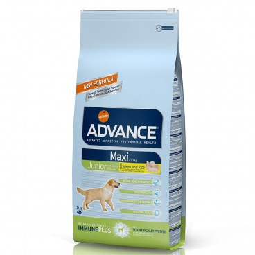 Advance Dog Maxi Junior 15 kg