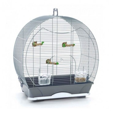 COLIVIE PET EXPERT SPECIAL SMALL SILVER