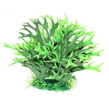 Decor Planta Feriga 20x16 cm