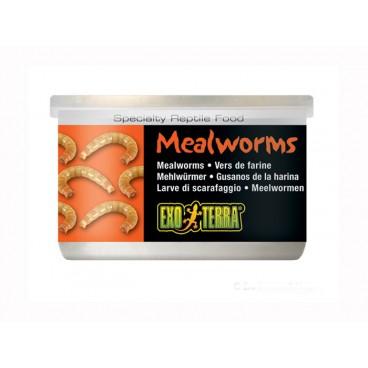 Hrana reptile Hagen Meniu Exo Terra Mealworms 34 g