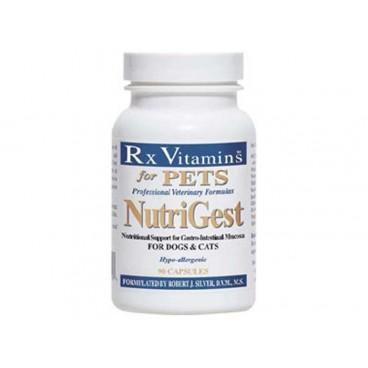 RX NutriGest 90 capsule reface flora intestinala