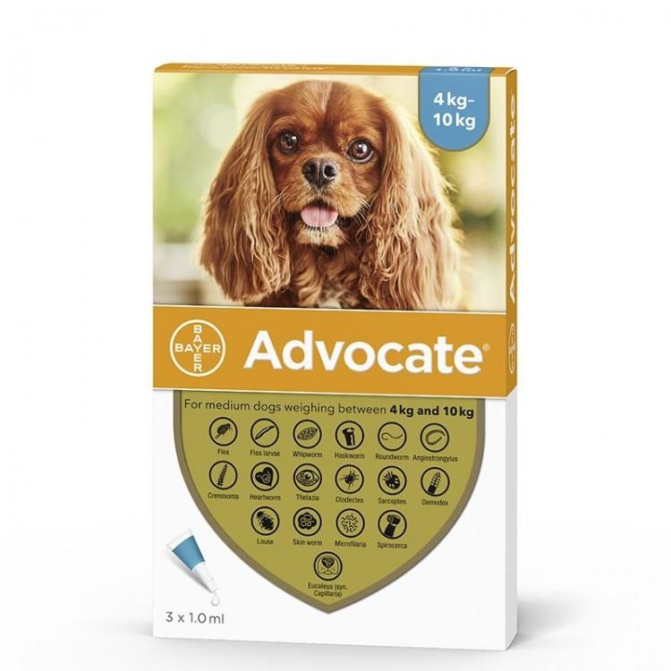 Advocate 100 Caine | Pipeta antiparazitara Advocate (4 - 10 kg) 1 cut - 3 pipete