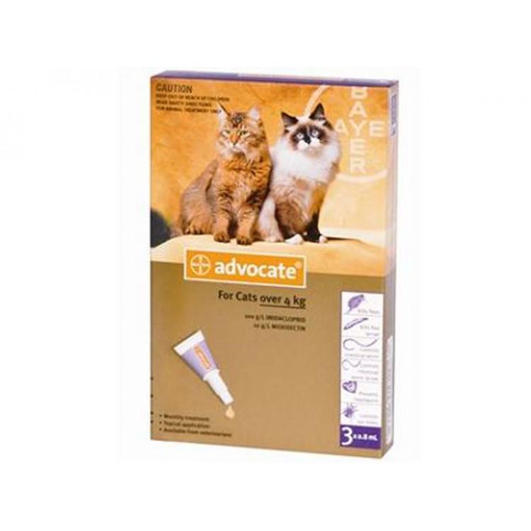 Advocate Cat (4 - 8 kg), 3 pipete