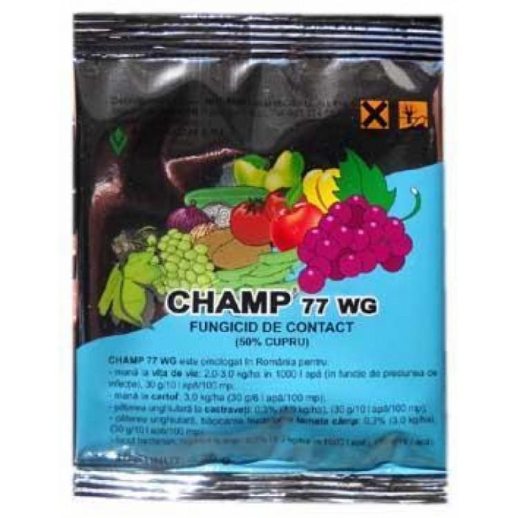 CHAMP 77 WG 20g