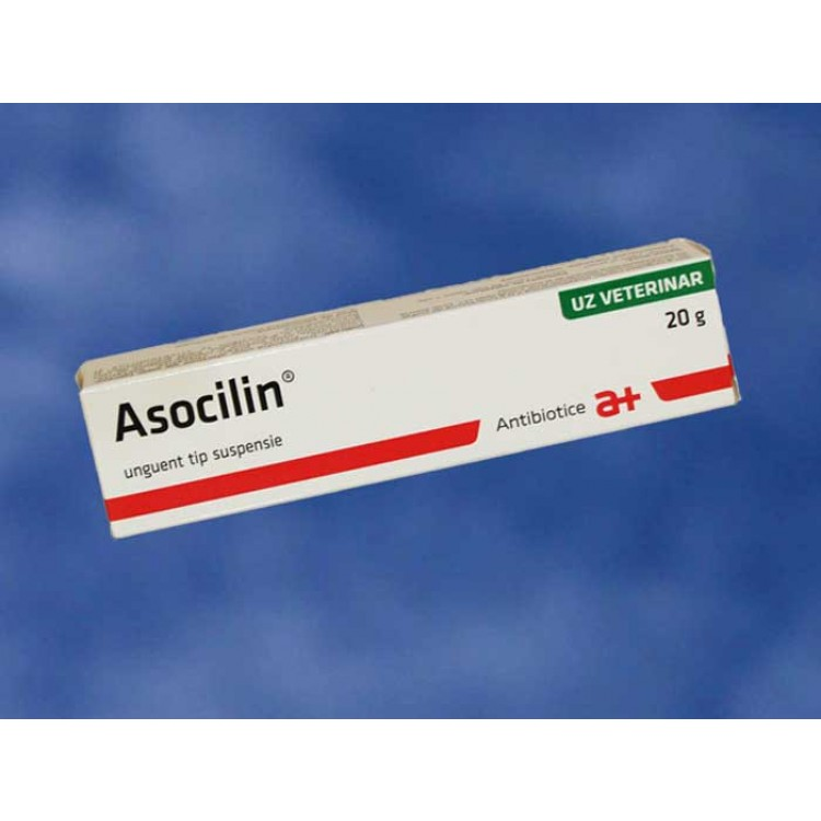 Asocilin 20 g unguent cu antibiotic