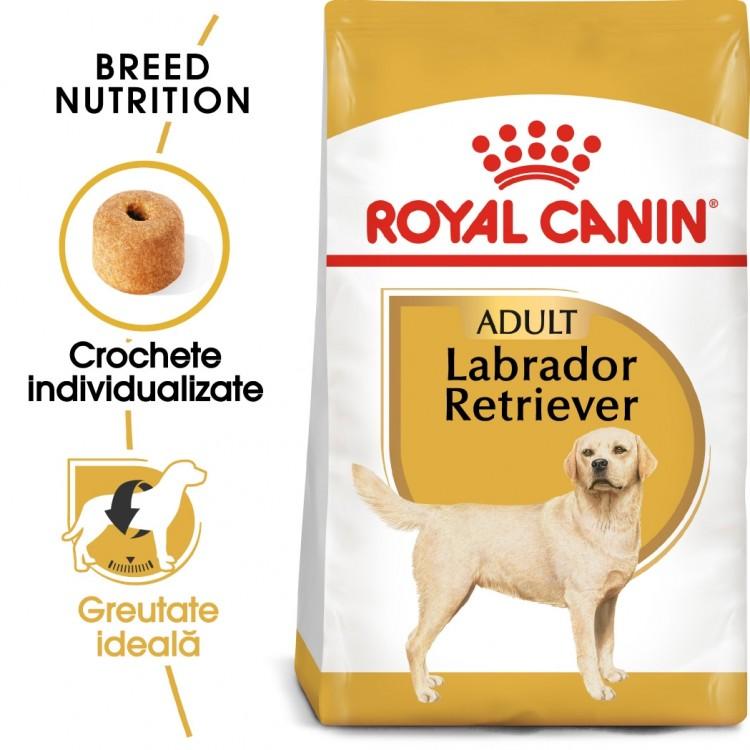 Royal Canin Labrador Adult - sac
