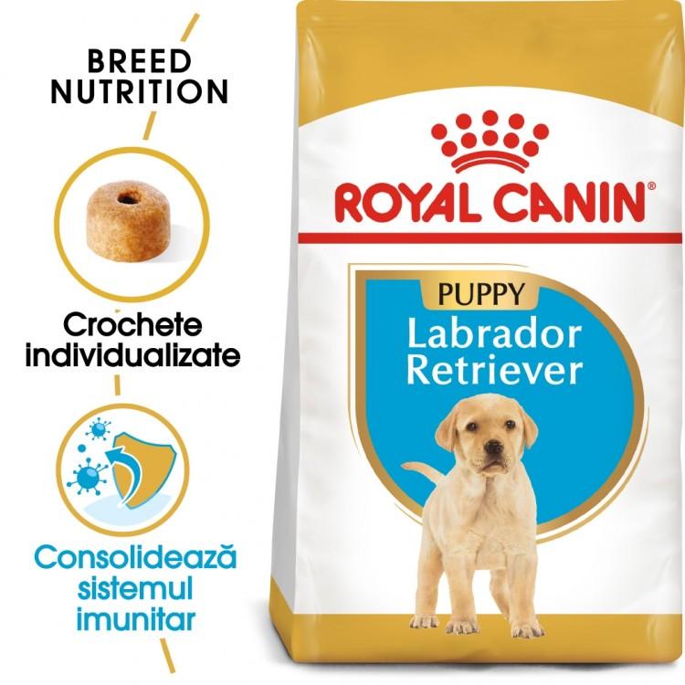 Royal Canin Labrador Puppy - sac