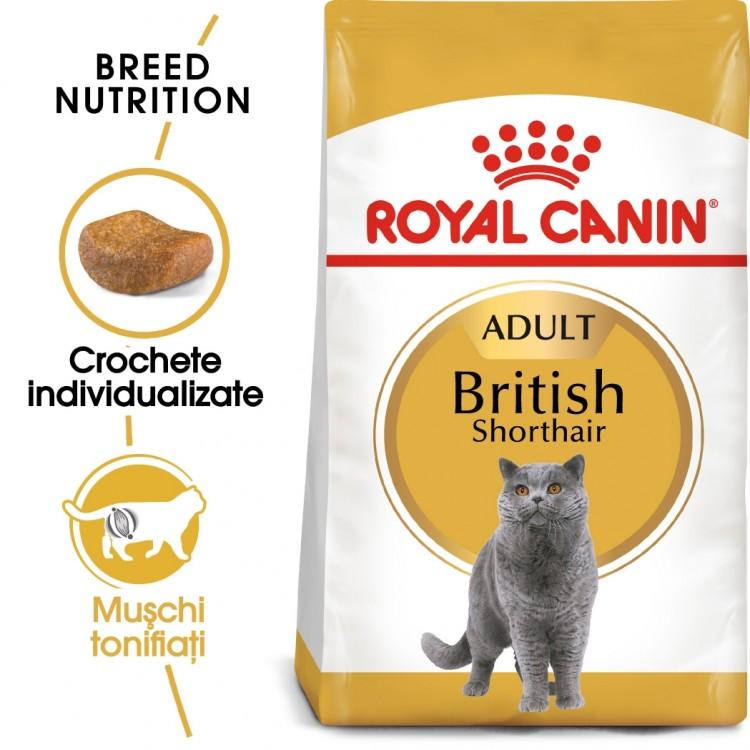 Royal Canin British Shorthair Adult - ambalaj