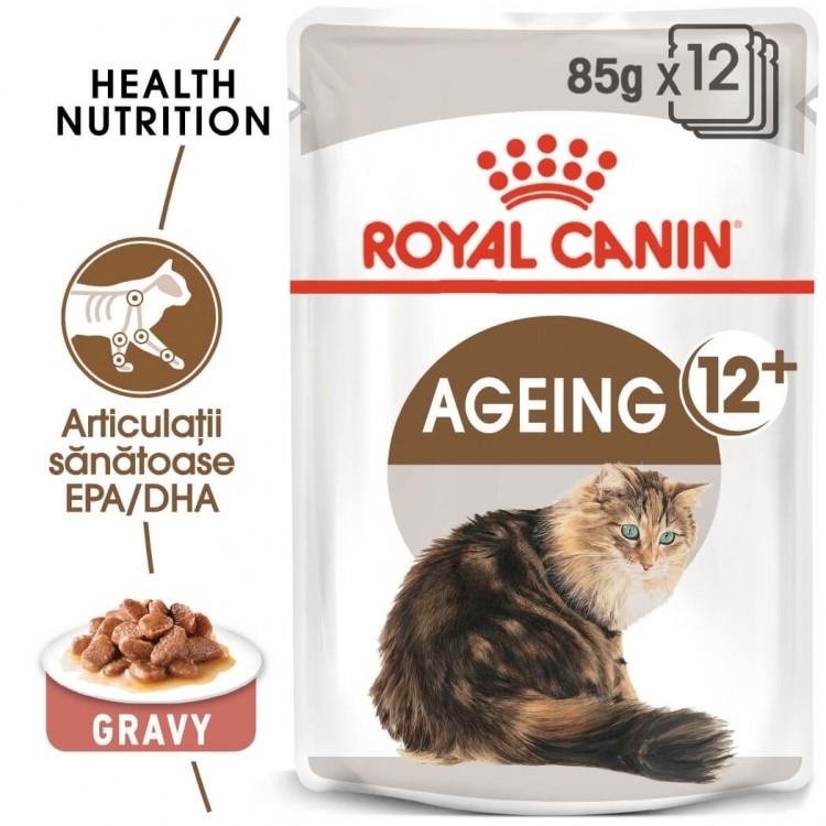 Royal Canin Feline Ageing +12, 1 plic 85 g