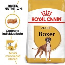 Royal Canin Boxer Adult hrana uscata caine