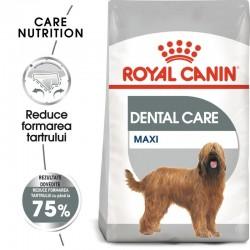 Royal Canin Maxi Dental Care Adult hrana uscata caine, reducerea formarii tartrului