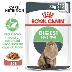 Royal Canin Digest Sensitive Care Adult hrana umeda pisica, confort digestiv (in sos), 12 x 85 g