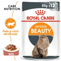 Royal Canin Intense Beauty Care Adult hrana umeda pisica, piele/blana sanatoase (in sos), 12 x 85 g