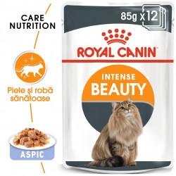 Royal Canin Intense Beauty Care Adult hrana umeda pisica, piele/blana sanatoase (aspic), 12 x 85 g