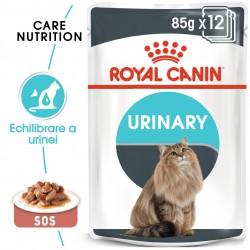 Royal Canin Urinary Care Adult hrana umeda pisica, sanatatea tractului urinar (in sos), 12 x 85 g