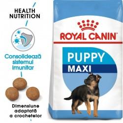 Royal Canin Maxi Puppy hrana uscata caine junior
