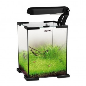 Acvariu AQUAEL Shrimp 20