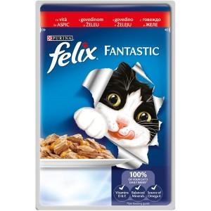 Felix Fantastic, Vita, 100 g