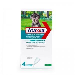 Ataxxa Dog 250 (10 - 25 kg), 4 pipete