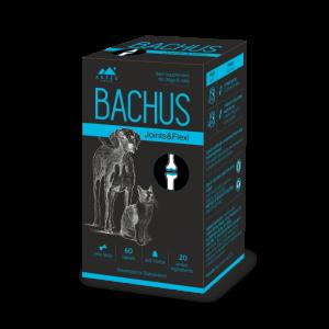 BACHUS Joints & Flexi, suplimente nutritive pentru caini si pisici
