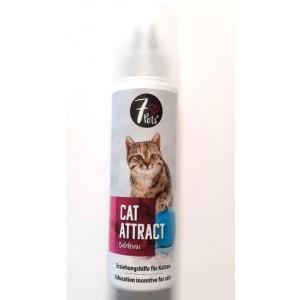 Cat Attract, 200 ml