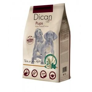 Dibaq Premium Dican Up Pups, Turkey & Chicken, 3kg