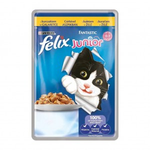 Felix Fantastic Junior, Pui, 100 g