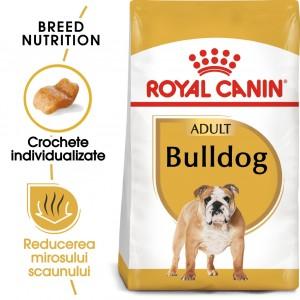 Royal Canin Bulldog Adult - sac