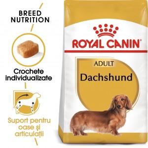 Royal Canin Dachshund Adult - sac