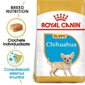 Royal Canin Chihuahua Puppy - sac