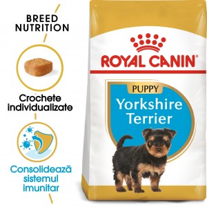 Royal Canin Yorkshire Terrier Puppy - sas