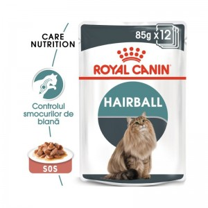 Royal Canin Hairball Care Gravy
