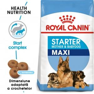 Royal Canin Starter Mother & Babydog Maxi - sac