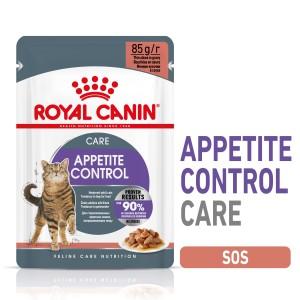 Royal Canin Appetite Control, hrana umeda pisica sterilizata, reglarea apetitului (in sos), 12x85 g - plic