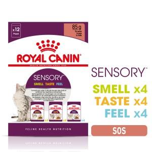 Royal Canin Sensory Multipack, hrana umeda pisica (in sos), 12x85 g - sortimente