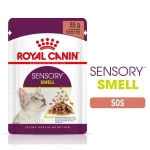Royal Canin Sensory Smell, hrana umeda pisica (in sos), 12x85 g - plic
