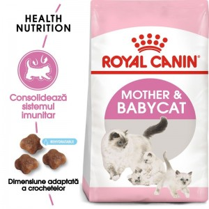 Royal Canin Kitten Mother & Babycat