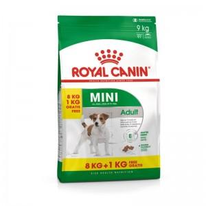 Royal Canin Mini Adult 8 Kg + 1 kg CADOU