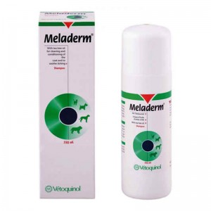 Sampon Meladerm 100 ml