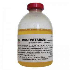 Solutie injectabilă MULTIVITAROM 100 ml