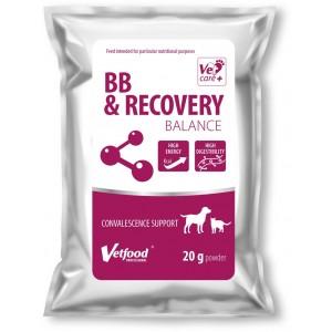 BB & RECOVERY BALANCE, 20 g